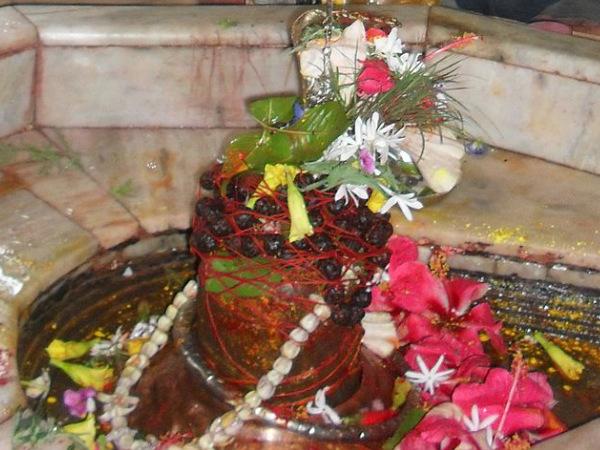 ദീര്ഘായുസ്സ് മരണഭയത്തിന് മഹാമൃത്യുഞ്ജയമന്ത്രം