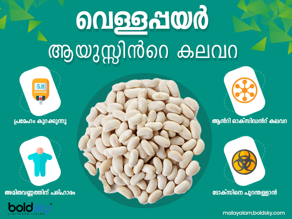 Health Benefits Of White Beans