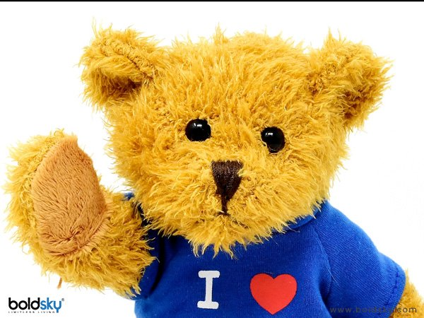 Know why Teddy Day is celebrated in Valentines week