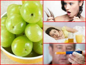 Side Effects Of Amla You Should Be Aware Of