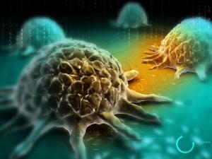 Benefits Of Ashwagandha For Cancer Treatment