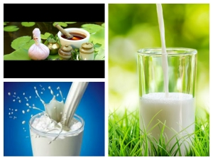 What Is The Best Time Consume Milk According Ayruveda