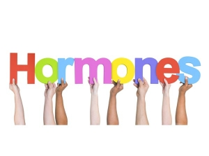 What Happens When Your Hormones Do Not Function Well