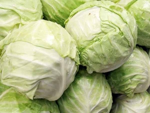 Top Side Effects Of Cabbage