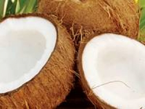 Coconut Oil For Remedy