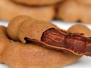 Tamarind Seeds Repairs Brain Cells Aid