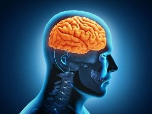 Things Do A Sharper Brain