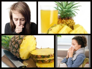 Pineapple Fruit Can Keep Cough Away