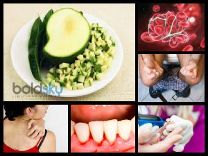 Fourteen Health Benefits Of Green Mango