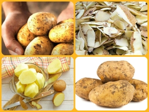 Benefits And Uses Of Potato Peel For Skin
