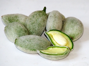 Best Benefits And Uses Of Green Almond
