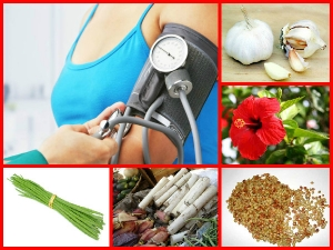 Some Ayurvedic Treatment For Blood Pressure