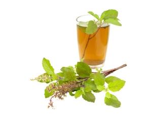 How Basil Green Tea Benefits Our Health