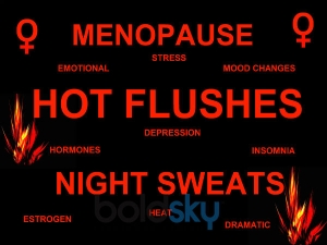 Everything Women Should Know About Menopause