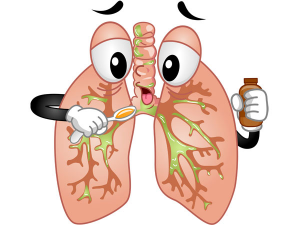 Elixir To Help Clear Your Lungs Best For Smokers