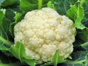 Include Cauliflower Leaves In Diet