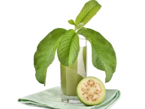 Try This Guava Leaf Remedy To Control Blood Cholesterol Level