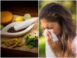 Ayurveda Alternatives For Cold And Flu