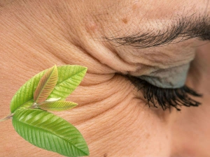 Use Guava Leaves To Beat Skin Problems