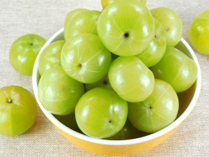 What Are The Benefits Of Eating Amla During Pregnancy