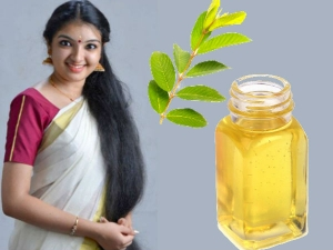 Guava Leaves For Hair Growth How To Use This Ancient Beauty Remedy