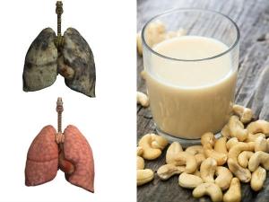 Health Benefits Of Cashew Milk And Recipe