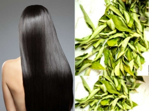 The Truth About Using Curry Leaves For Hair Growth