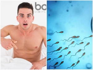 Can High Intensity Workout Reduce Sperm Count In Men