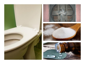 Try This Keep Your Toilet Smells Fresh Clean