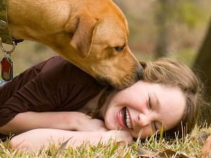 Reasons Why Dogs Lick Humans