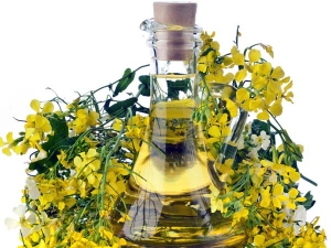 Amazing Benefits Of Adding Mustard Oil To Your Beauty Regime