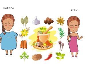 The Fastest Indian Diet Plan To Lose Weight