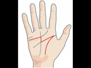 Do You Have M Letter On You Palm