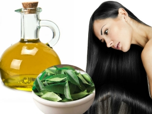 This Curry Leaf Oil Will Stop Hair Loss And Increase Hair Growth