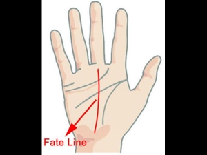 If You Have These Lines On Your Palm You Will Be Rich
