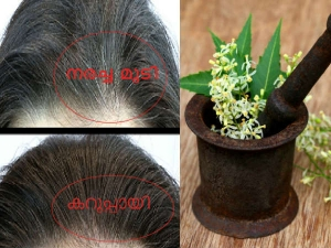 Ayurvedic Treatments To Help You Deal With Premature Hair Graying