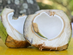 What Are The Benefits Of Young Coconut Meat