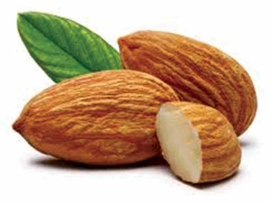 Amazing Benefits Of Almond For Skin And Hair