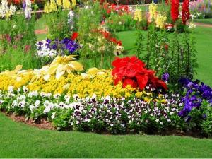 Vastu Tips Arrange Garden At Home