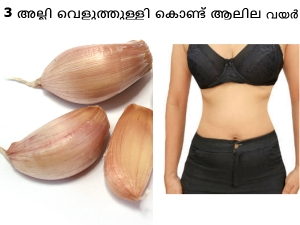 How Use Garlic Reduce Belly Fat