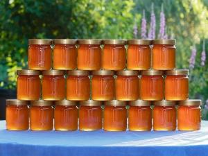 Health Benefits Taking Honey An Empty Stomach