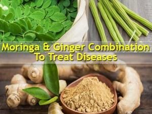Health Benefits Ginger Drumstick Leaves Health Benefits