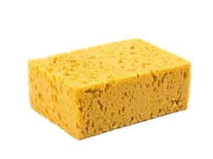 Beware Your Kitchen Sponge