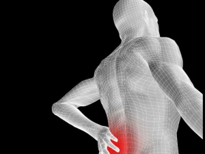 Different Medical Causes Back Pain