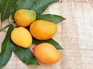 Benefits Of Eating Mango Daily