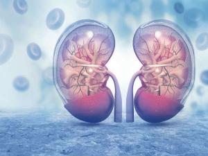 Chronic Kidney Disease Symptoms