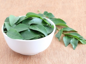 Health Benefits Eating Curry Leaf On An Empty Stomach