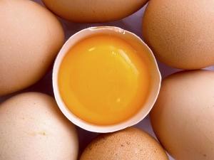 Egg Yolk Prevent Hair Loss
