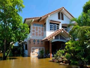Home Care Tips For Monsoon Season