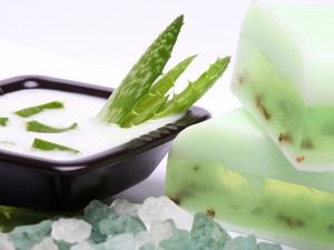 Beauty Benefits Of Using Aloe Vera Soap